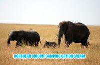 Northern circuit Tanzania Camping Safari