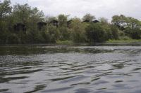Nile Safari Lodge view from River.jpg