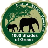 1000 shades of green.jpg